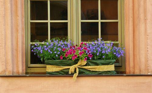 floral decoration window sill window