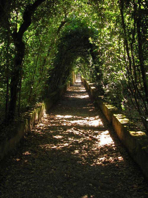 Florencija,boboli sodas,italy,romantiškas,Haunting,prarasti