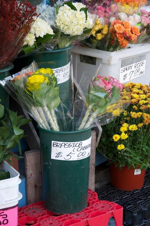 florist flowers shop
