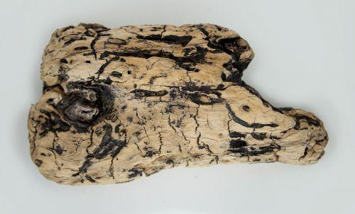 flotsam wood sea