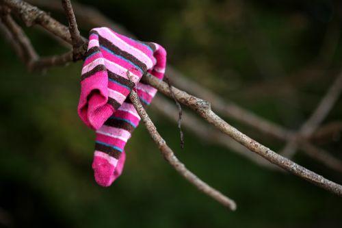 flotsam sock branch