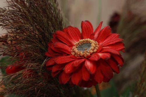 flower artificial flowers still life
