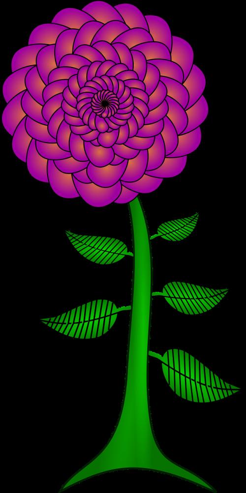 flower paisley paisley petals