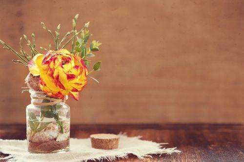 flower ranunculus red yellow