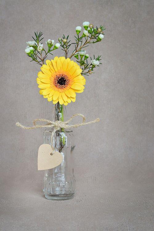 gėlė,Gerbera,geltona,žiedas,žydėti,geltona gėlė,Frangipani,vazos,stiklas,širdies pakaba,deko,apdailos gėlė,pavasario gėlė,Uždaryti