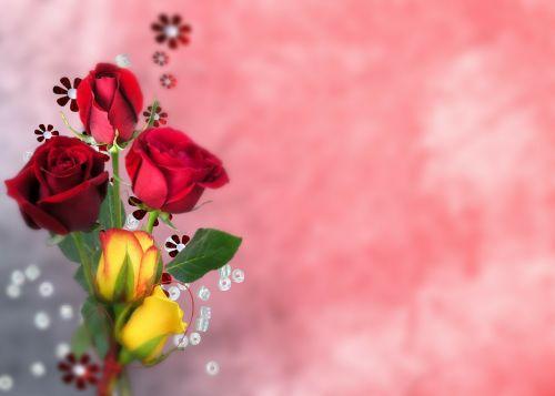 flower arrangement rose