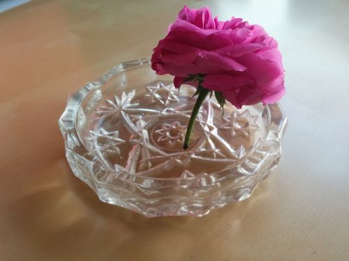 flower ashtray ecological