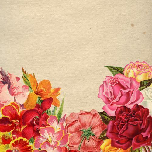 flower floral bouquet