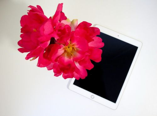flower pink tablet