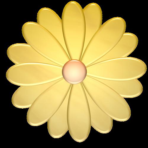 gėlė,geltona,augalas,gamta,pavasaris,gėlių,vasara,žydėti,šviežias