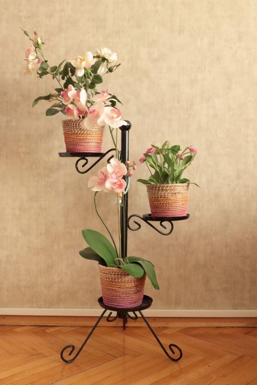 gėlė,vazos,jardiniere