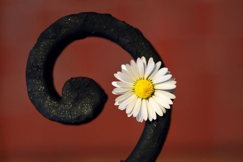 flower snail metal
