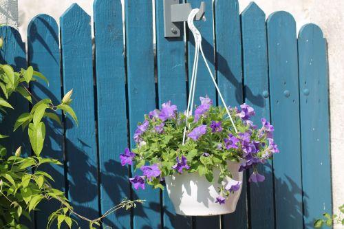 flower barrier garden