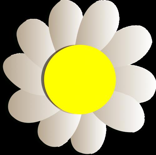 flower floral design
