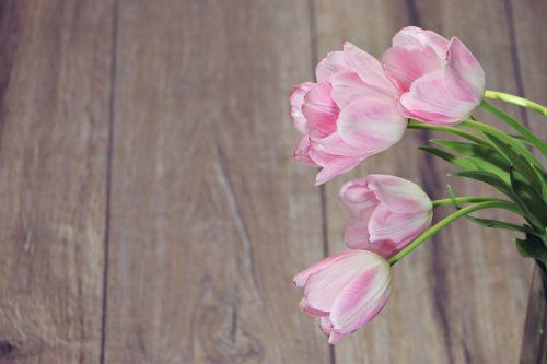 flower bouquet tulip