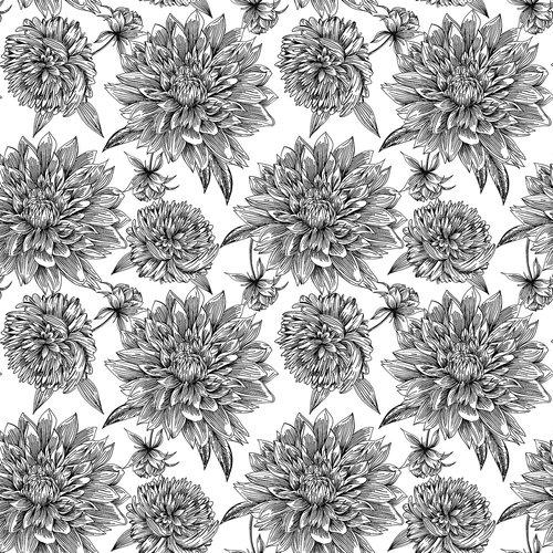 flower  flowers  drawing
