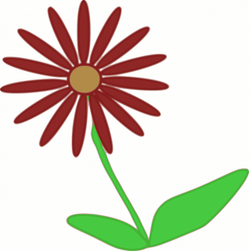 flower spring plant
