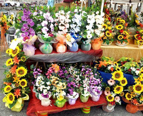 flower composition market