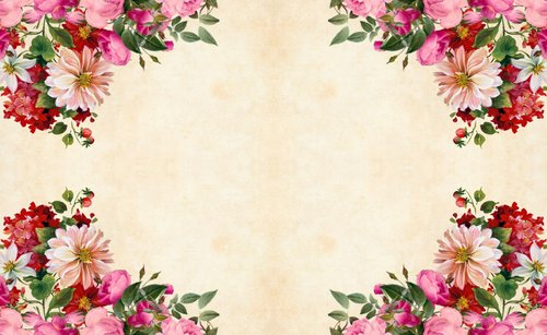 flower  floral  paper