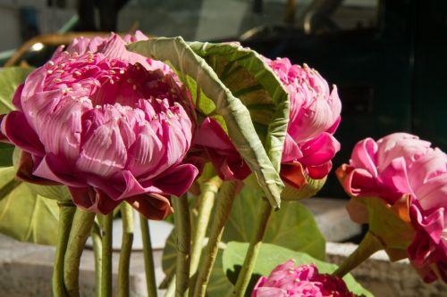 flower fake artificial