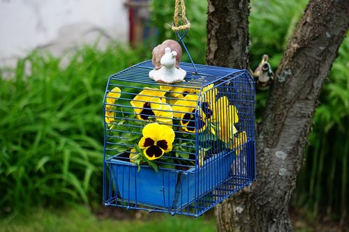 flower  cage  design