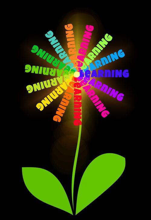 flower grow color