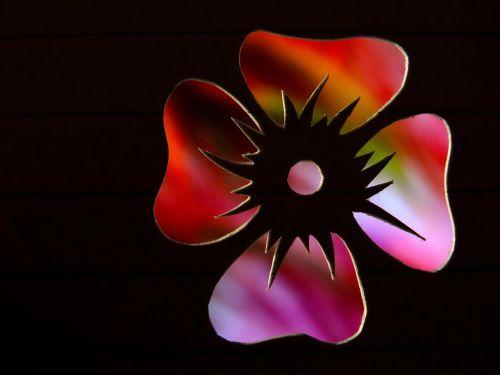 flower contour outlines