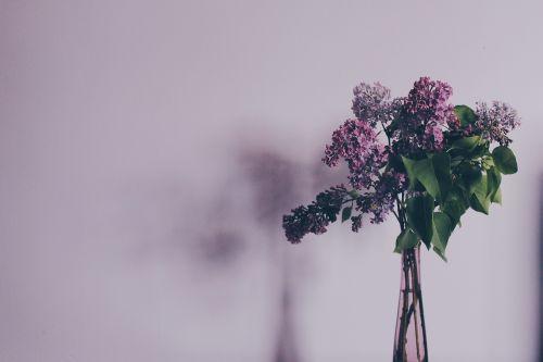 flower bouquet syringa