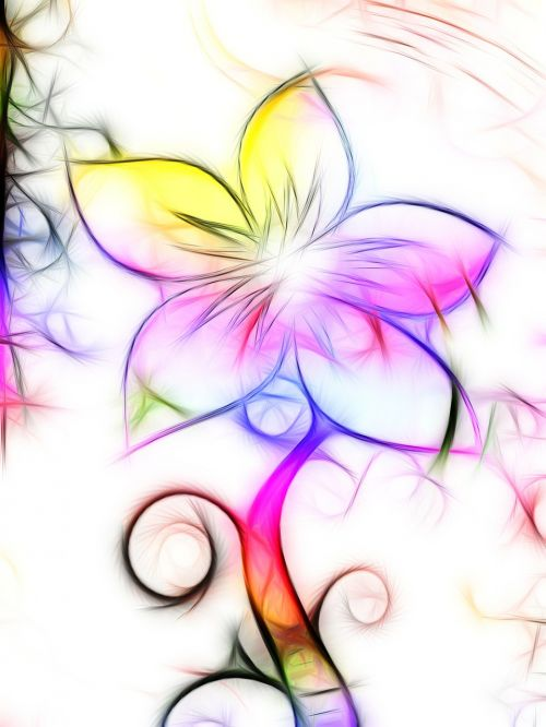 flower colorful graphic