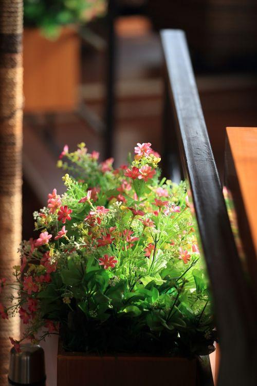 flower afternoon tea leisure