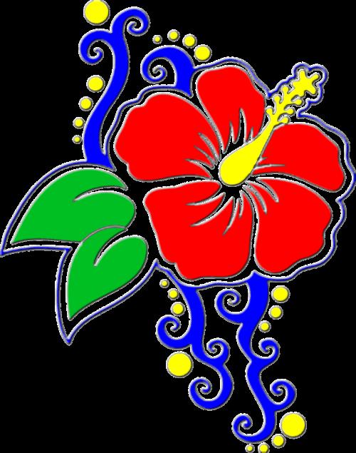 flower hibiscus floral