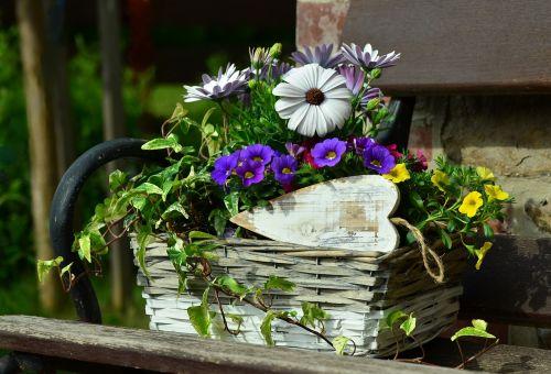flower basket floral decoration still life