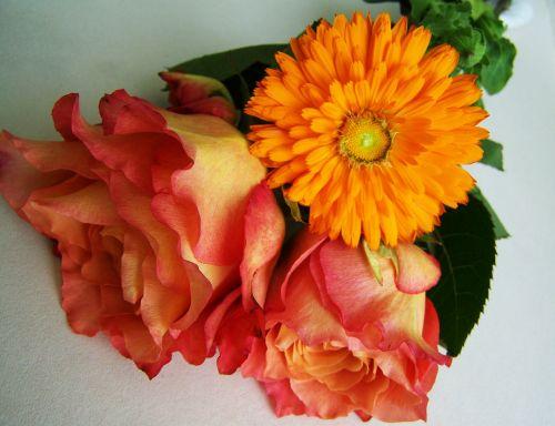 flower bouquet orange-pink flowers cut flower
