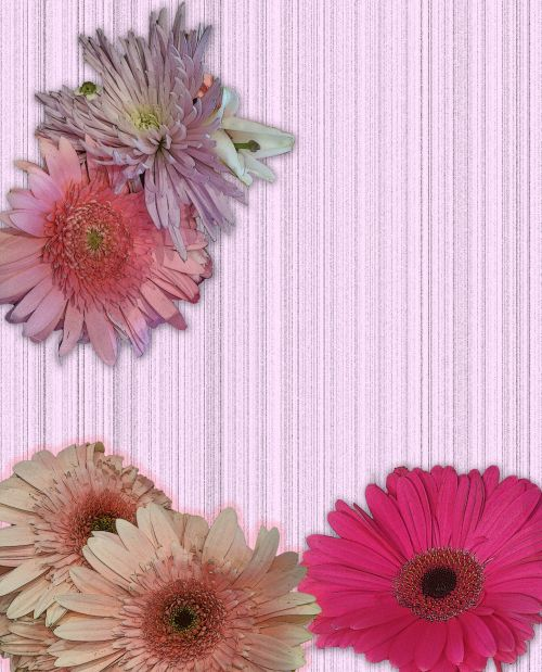 Flower Card Add Your Text