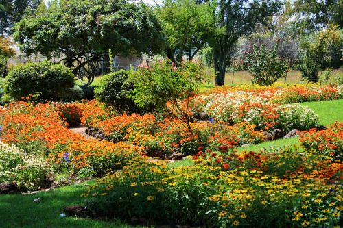 Flower Garden With Beds