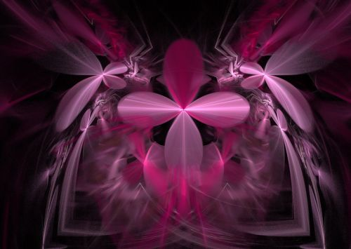 Flower Petals In Beautiful Pink