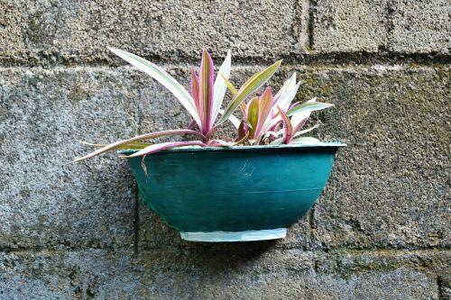 flower pot hand made pot hanging pot