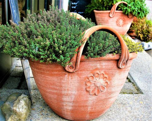 flower pot clay basket