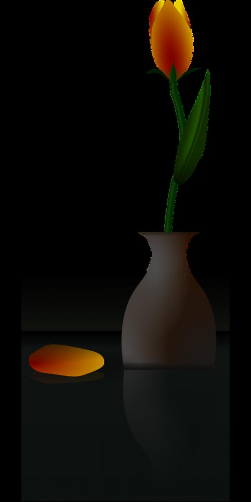 flower vase tulip yellow