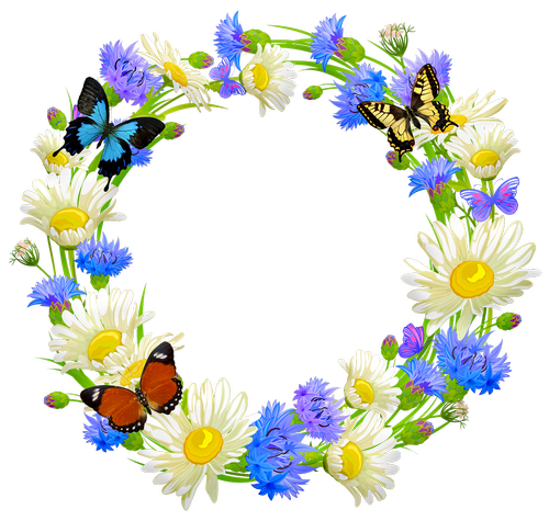 flower wreath  butterflies  daisy