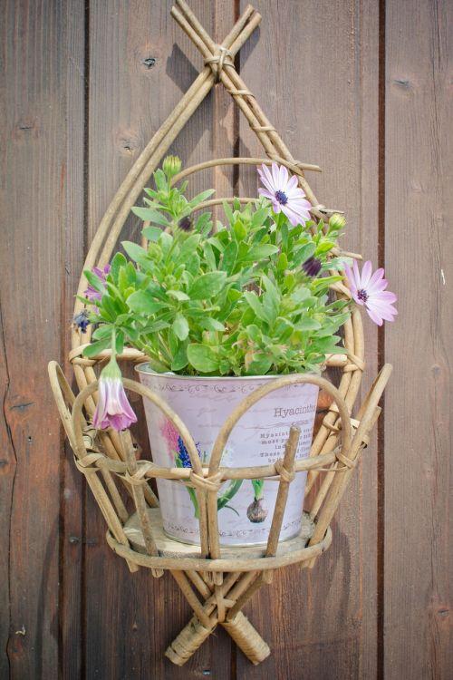 flowerpot purple daisies decoration