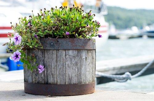 flowerpot  flowers  wood