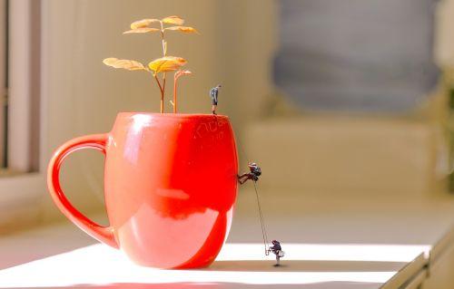 flowerpot climb flowerpot climb