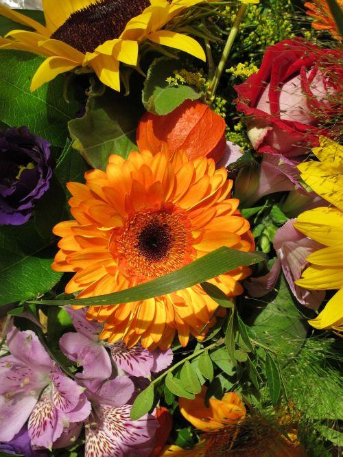 sun flower mixed bag flowers