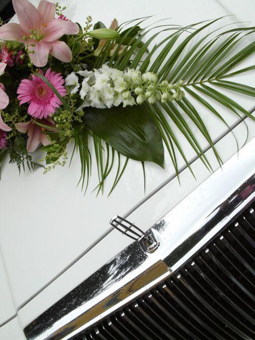 flowers auto car bonnet