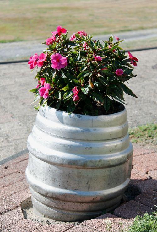 flowers beer keg planters