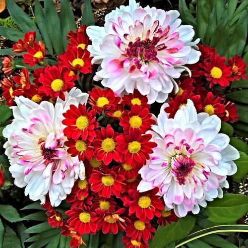 flowers autumn bouquet white
