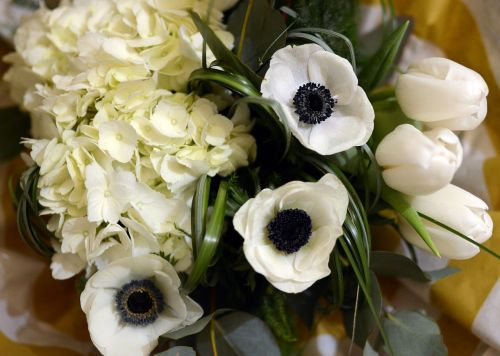 flowers bouquet of flowers anemone