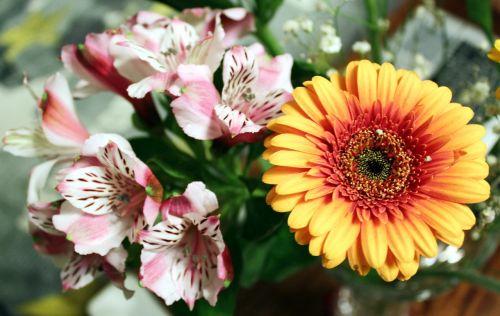 flowers bouquet floral bouquet