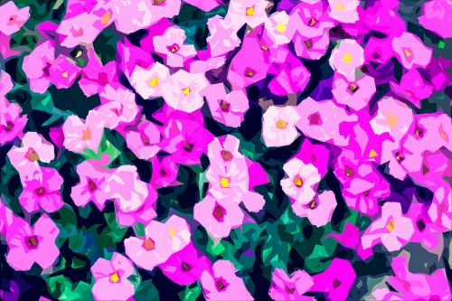 flowers garden flower carpet